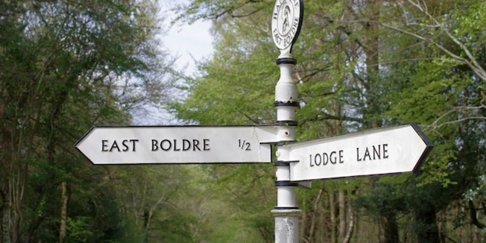 Cycling Guides - The New Forest
