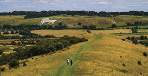 Dunstable Downs, Whipsnade and Kensworth