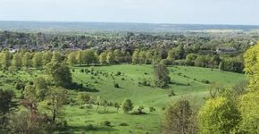 Tring to Hastoe and back through Tring Park