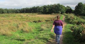 Cannock Chase Club Site Castle Ring Fort walk