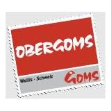 Obergoms Tourismus AG profile image