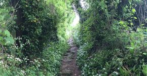 This Way - Brighton to Lewes - Route One