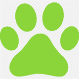 Dog Walks The Outdoor Guide  profile image