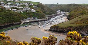 St. David's to Solva Harbour