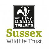 Sussex Wildlife Trust profile image