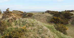 Cleeve Hill to Dowdeswell