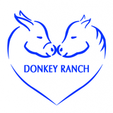 Donkey Ranch profile image
