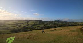 Best Walks With A View: The Golden Cap Walk, Dorset