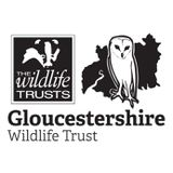 Gloucestershire  Wildlife Trust profile image