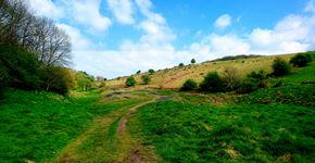 Cheddar-Ubley Warren Circular