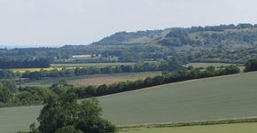 Cookley Green and Ewelme