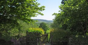 HPB Bell End Farm, Rosedale: Northern Rigg
